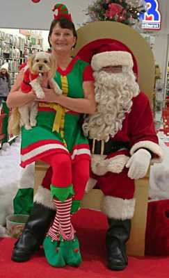 Santa - Place Bathurst Mall