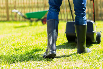 Tips for Getting the Best Lawn Maintenance Company