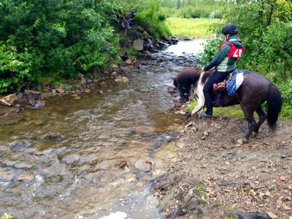 Competitive Trail Riding