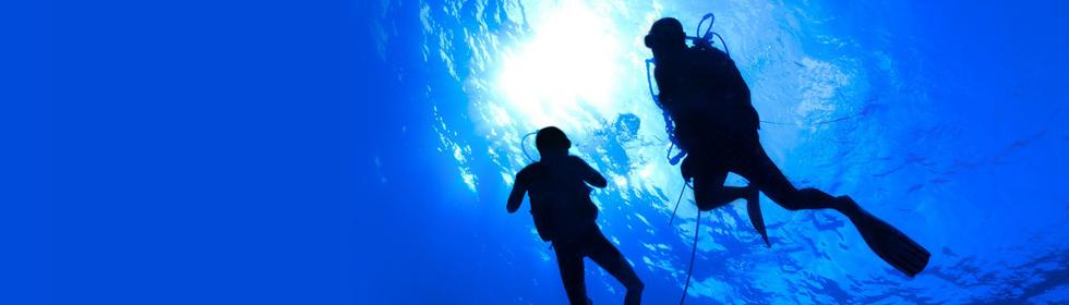 Benefits of Scuba Diving Certification