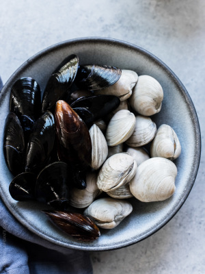 MUSSELS OR CLAMS