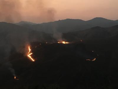 Grassland fires in Shola-grasslands in Western Ghats, India