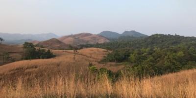 Shola-grasslands