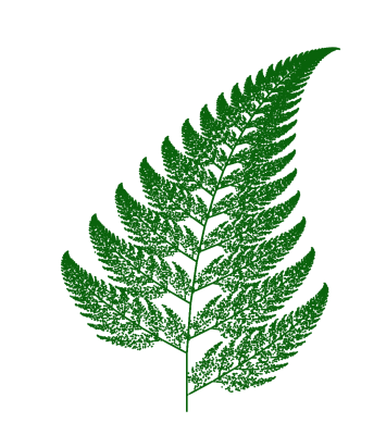 Barnsley fern: fractals in ecology