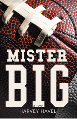 Mister Big by Harvey Havel