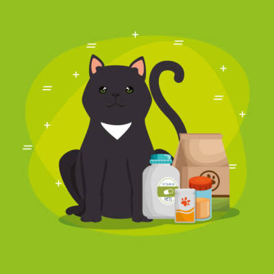 Essential Details to Have In Mind Regarding the Pet Products