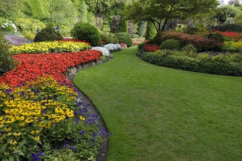 Tips On Choosing A Landscaping Company And A Lawn Mower