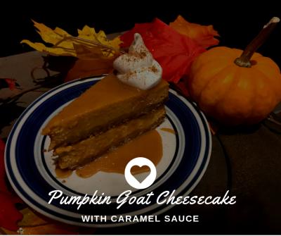 Pumpkin Goat Cheesecake!!