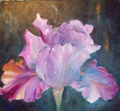 Soft & Lovely Iris