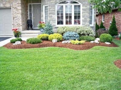 Complete Lawn Maintenance