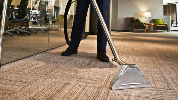 Stick Vacuum for Pet Hair on Hardwood Floors