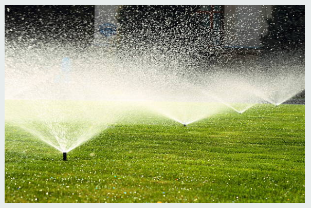 Why an Effective Water Irrigation System Matters for Your Garden