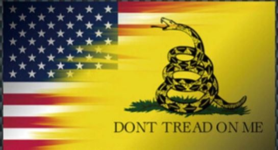 Dont Tread on me/American Flag Sticker
