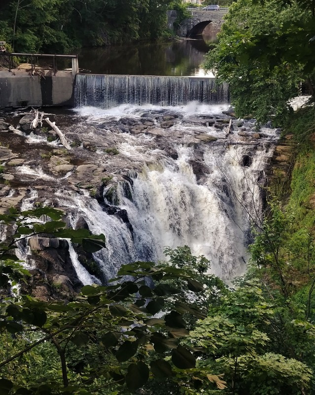 Upper falls from Yard
