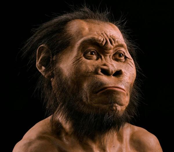 3 Nov: Steven Tucker: Finding Homo Naledi
