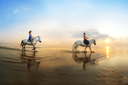 Everything You Need to Know about Horseback Riding Tours and Vacations
