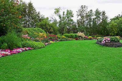 Tips for Hiring a Lawn Care Company