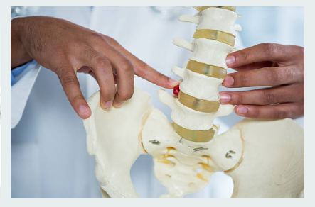 Elements to Consider When Picking the Best Spine Doctor