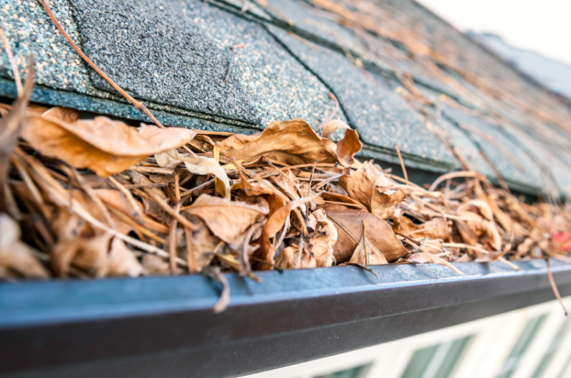 Factors to Put into Consideration When Choosing Rain Gutters Installation Company