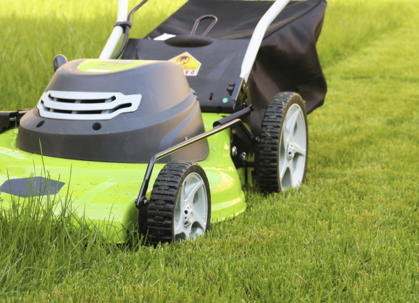 The Most Key Gains for Hiring the Best Minneapolis Lawn Care