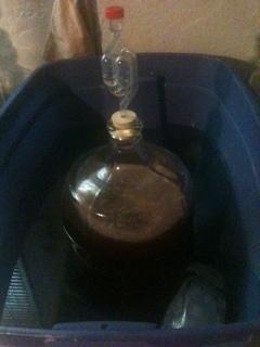 Experiment - Pomegranate Cider