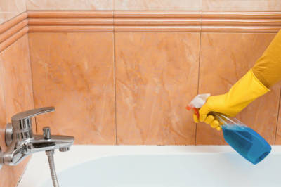 Importance of Hiring Mold Removal Services