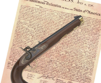 Constitution and Gun