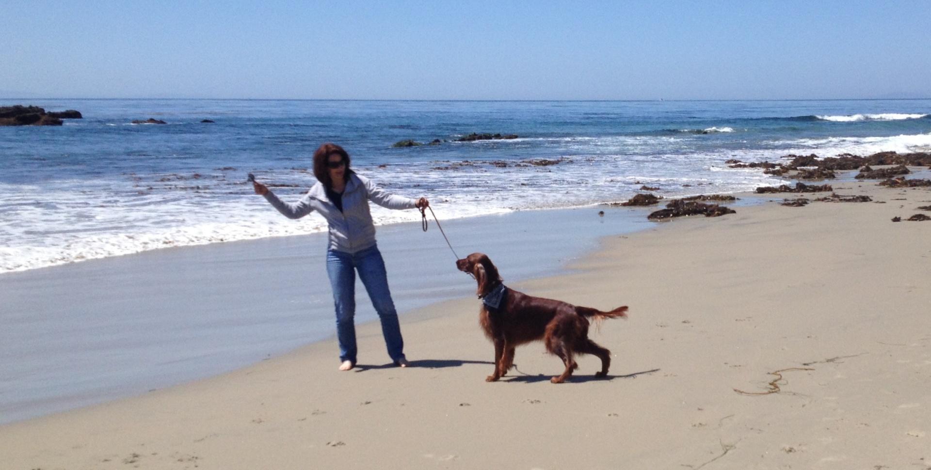 At Laguna Beach