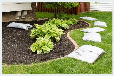 Landscaping Benefits