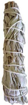 California White Sage Smudge Stick 7""