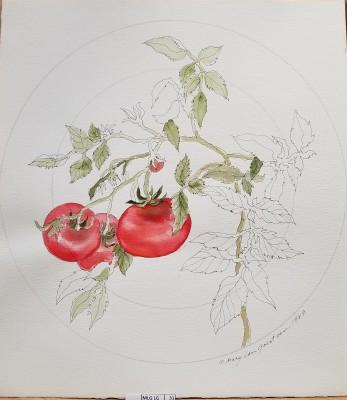 Tomato Dinner plate prototype