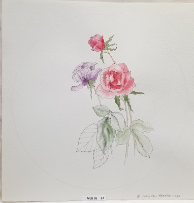 Western Rose