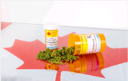 Factor to Consider when Looking for Cannabis Dispensary
