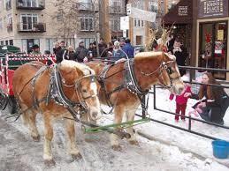 Horses in parade at Roscoe Village Winter Family Days Festival