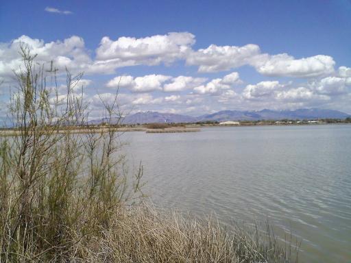 Gunnison Bend Reservoir