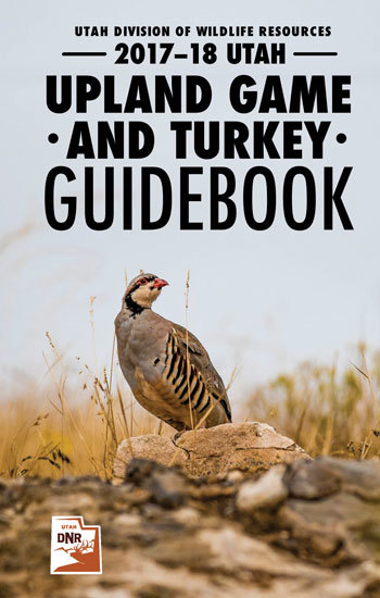 Upland Game & Turkey Hunting Guidebook