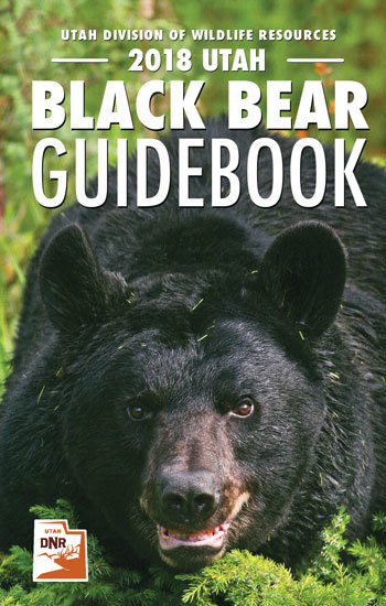 Black Bear Hunting Guidebook
