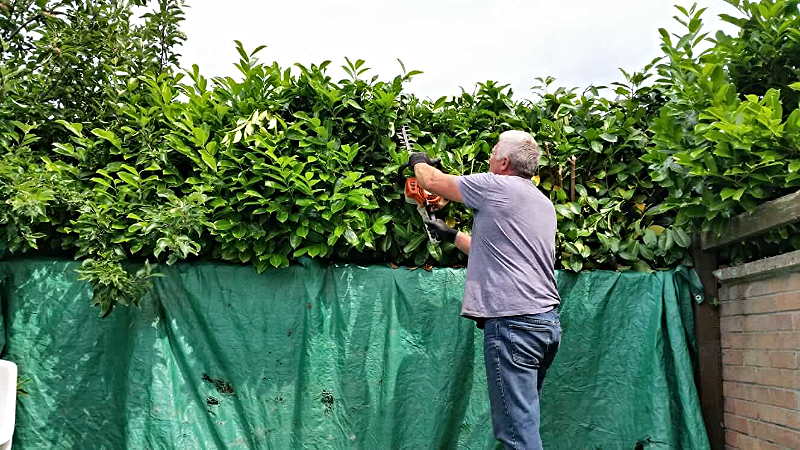 Hedge Cuttings Containment