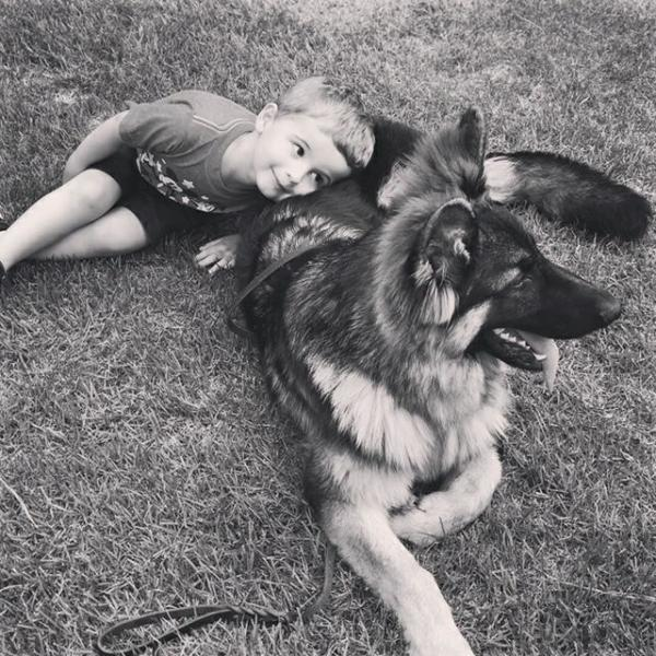 Remy, a 6 month old black/red GSD male, lying on lawn with 3 year old boy using him as a pillow