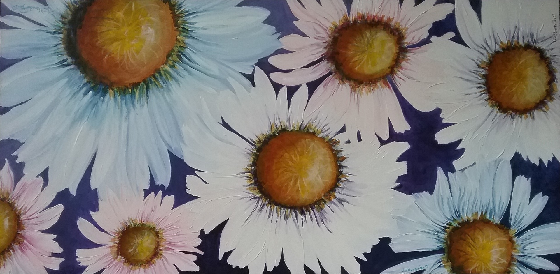 Daisies For You