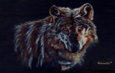 Wolf on Black Slate