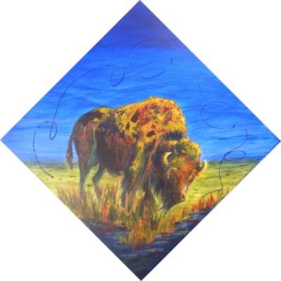 Buffalo in Colour