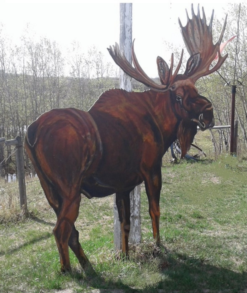 Moose....life size for outdoors