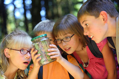 Ways in Which You Can Be Able to Find the Best Summer Camp for Your Kid