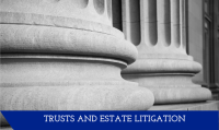 Trust and Estate Litigation page link