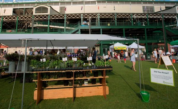 Farmers Market at Wrigley Field