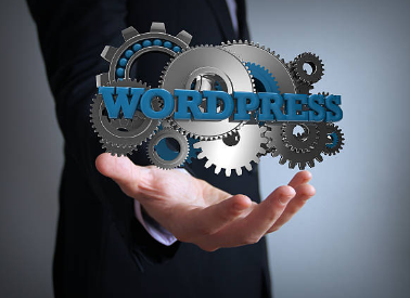 How to Choose a Good Freelance WordPress Developer