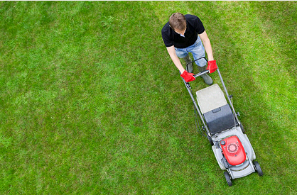 Importance of Employing Lawn Mowing Services