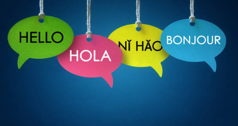 Tips When Searching for the Best Translation Company