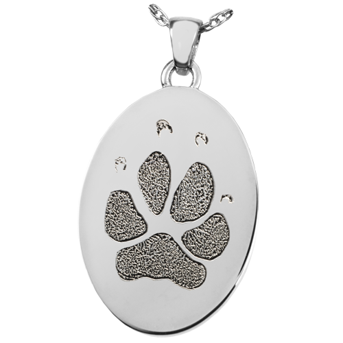 Paw and Nose Print